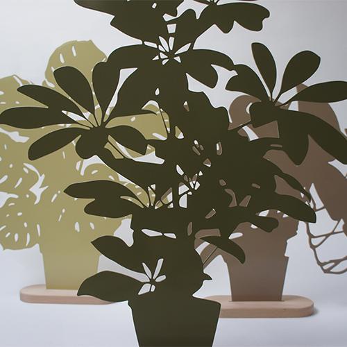 Silhouettes Schefflera Oooms