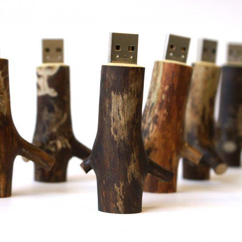 wooden usb stick 8 gb oooms. Black Bedroom Furniture Sets. Home Design Ideas