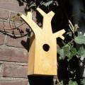 Treehouse oak 01